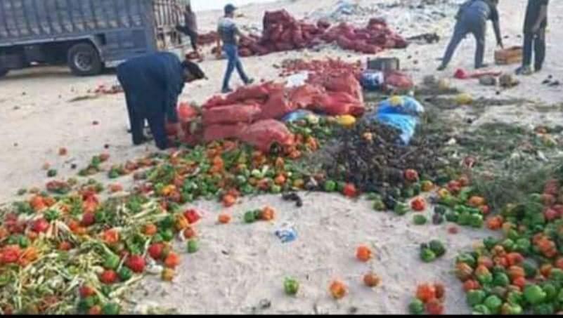 عينة من الفواكه والخضروات التي يصدرها المغرب إلى بلادنا